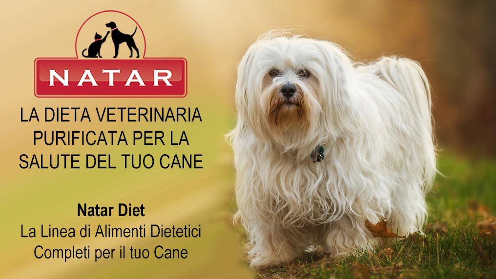 Natar Diet Cane