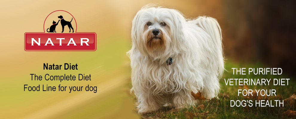 Natar Diet for Dogs