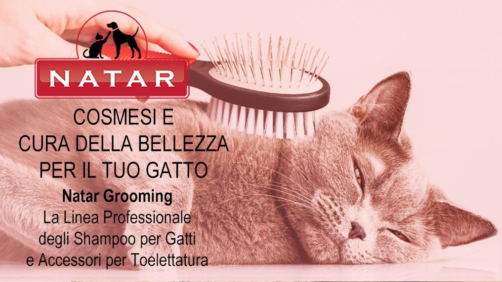 Natar Grooming Gatto