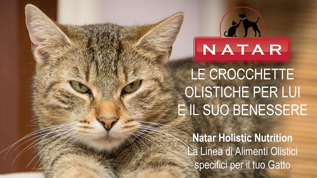 Natar Holistic Nutrition Gatto